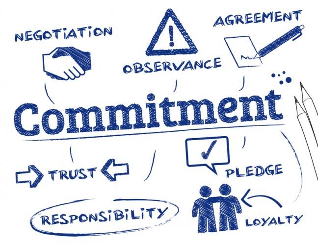 Opencity Inc, pledge, online authority, thought leadership